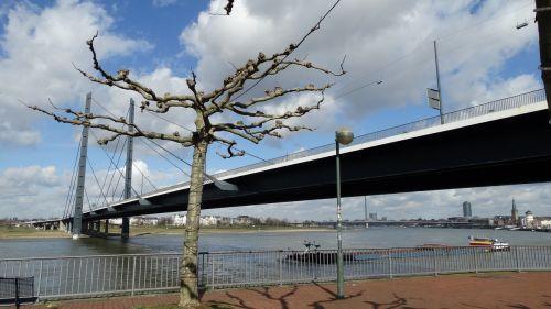 düsseldorf rhine bridge river blue