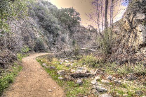 Šalis, kelias, purvinas & nbsp, kelias, kaimas, tapybos, lauke, gamta, meno, dulkėtas nešvarumų kelias