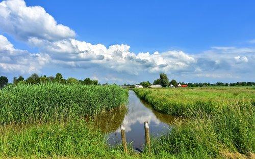 dutch landscape  landscape  scenic