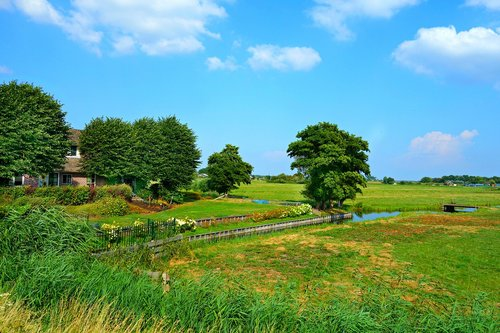 dutch landscape  farmhouse  meadows