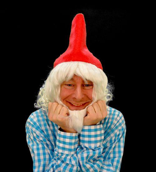 dwarf gnome imp