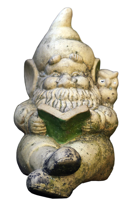 dwarf  garden gnome  read