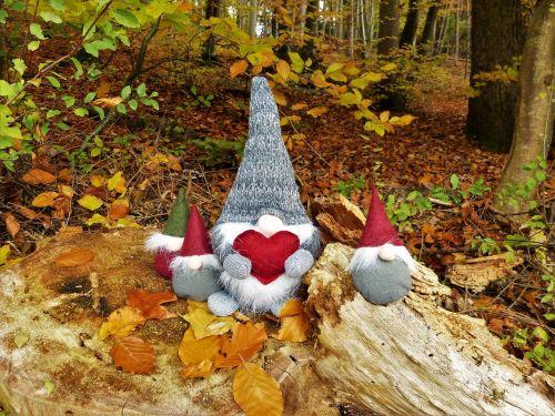 dwarfs gnome forest