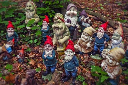 dwarfs  garden gnomes  flowers dwarf