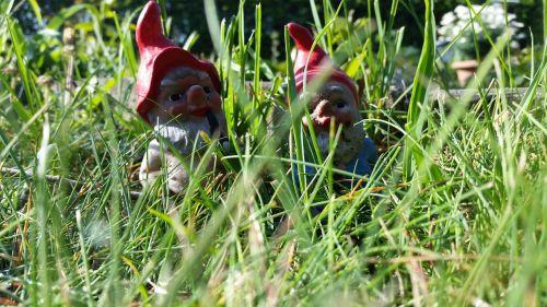 dwarfs meadow garden