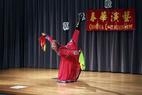 dynamic character performing arts