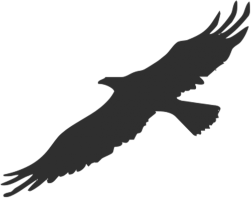 eagle bird silhouette
