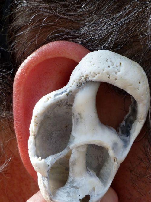 ear shell ear canal