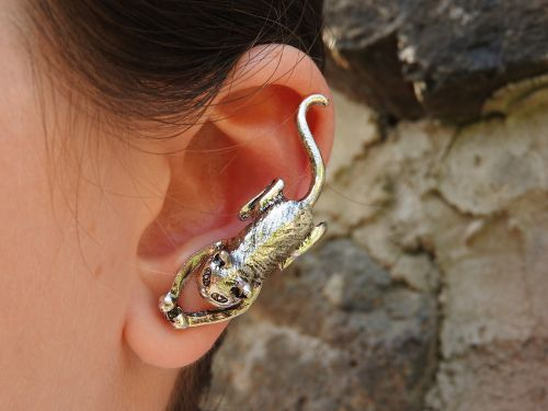 earrings cat silver