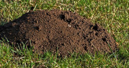 earth grass erdhaufen