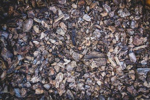 earth  dirt  bark mulch