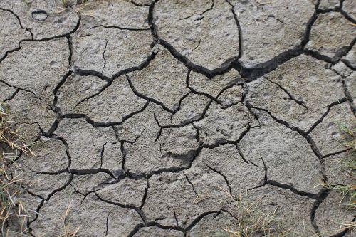 earth dry cracks