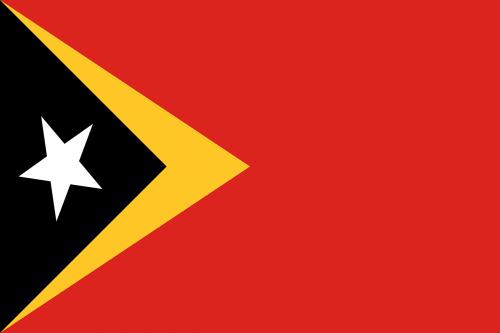 east timor flag national flag