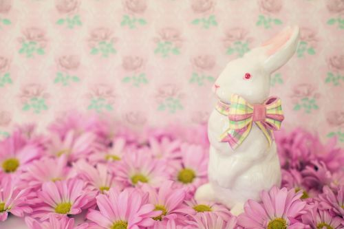 easter bunny flowers