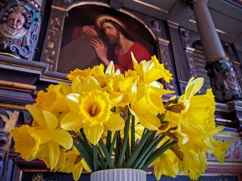 easter daffodil altar