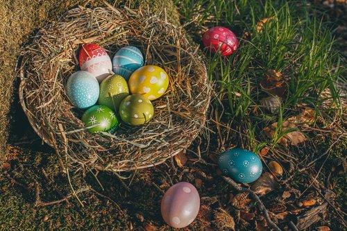 easter  easter eggs  egg