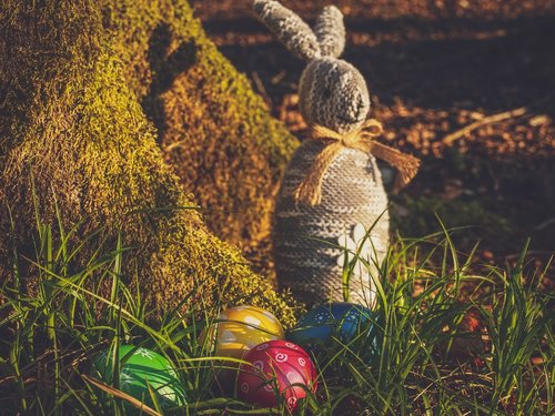 easter  egg  hare