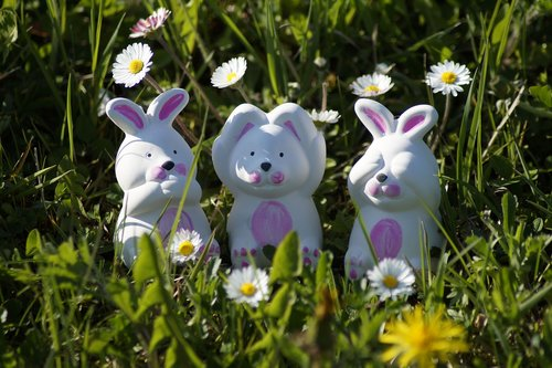 easter  easter bunny  spring