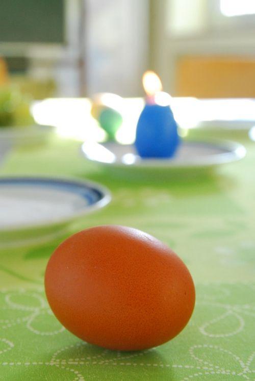 easter egg easter egg
