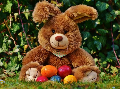 easter bunny happy easter colorful eggs