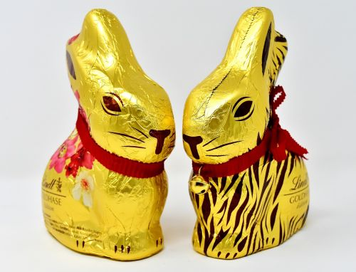 easter bunny chocolate easter