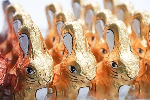 easter bunny  chocolate bunnies  candy