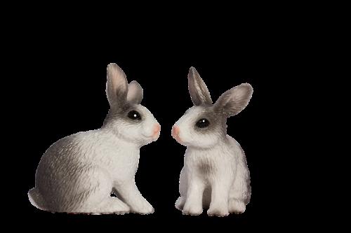 easter bunny spring frühlingsanfang
