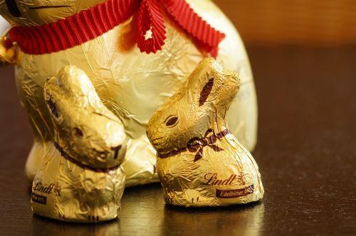 easter bunny rabbit gold foil