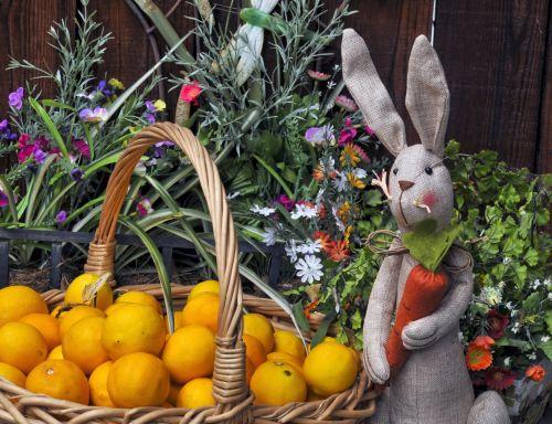 Easter Bunny And Lemons