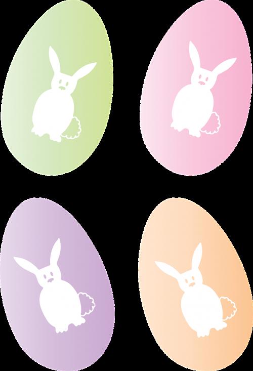 easter egg egg easter