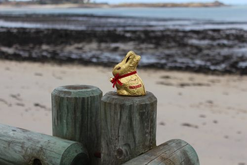 easter egg hunt seaside chocolate