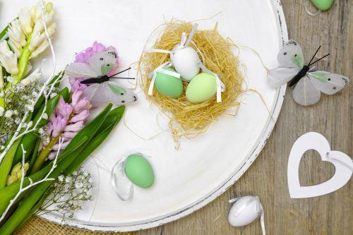 easter eggs egg nest