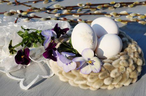 easter eggs egg white