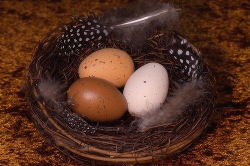 easter eggs  easter nest  easter