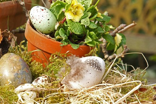 easter eggs  easter nest  easter