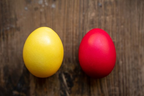 easter eggs  easter  yellow