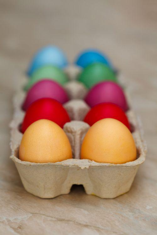 Easter Eggs In A Carton