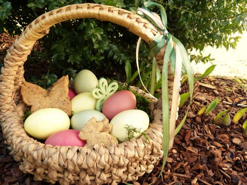 easter nest easter eggs colored