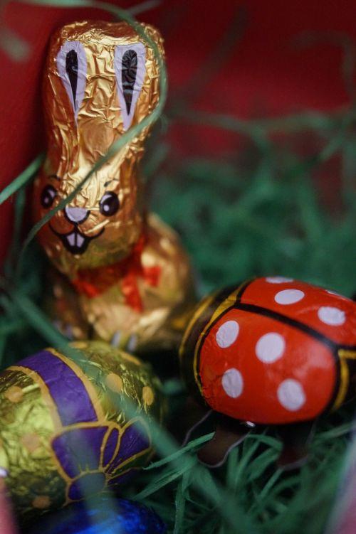 Velykų lizdas,Velykų žolė,Velykų körbchen,Velyku Triusis,šokoladas,linksmų Velykų,muitinės,krikščionybė,pavasario vartojimas,Velykos,pavasaris,šokoladinis Easter Bunny,Velykinis sveikinimas