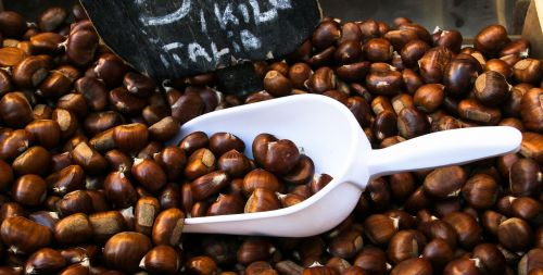 eat chestnut food