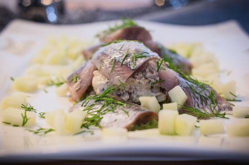 eat soused herring fish food