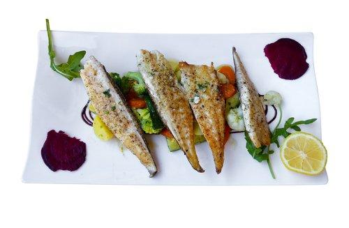 eat  food  fish