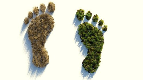 ecological footprint  climate protection  environmental destruction