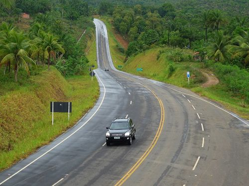 ecological road bahia atlantic forest