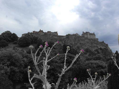 edinburgh castle thistle edinburgh