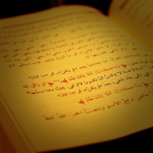 education teacher arabic