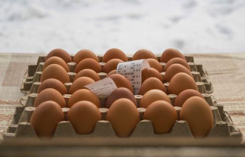 kiaušinis,vištiena,maistas,ūkis,sveikas,produktas,baltymas,natūralus,mityba,ingredientas,kiaušinio plekšnė,paketas,virimo,vištienos ūkis,Velykinis kiaušinis