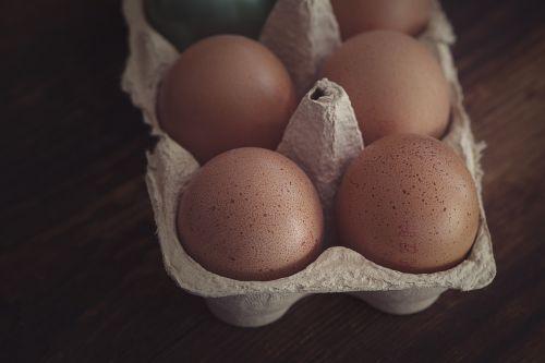 egg chicken eggs egg box