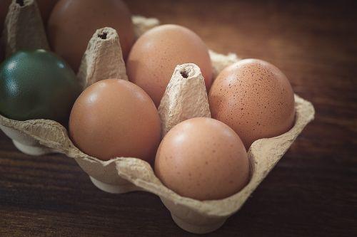 egg chicken eggs brown