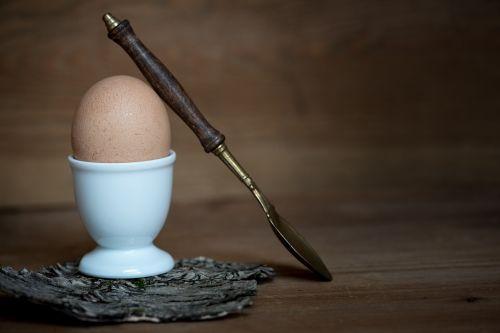 egg hen's egg brown egg